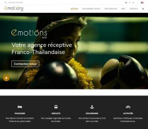 Emotions - Melki.Biz - Consulting, SEO & Web Design in Phuket