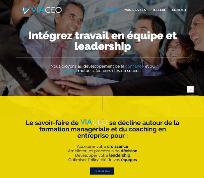 VIACEO by Melki.Biz Consulting & Web Design